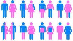 kønsroller